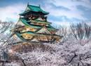 Du Lịch Nhật Bản: Osaka – Nara – Kyoto – Nagora – Núi Phú Sĩ – Tokyo (7N6Đ)