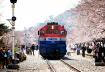 Kinh nghiệm di chuyển khi đi du lịch Hàn Quốc