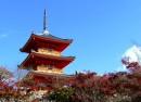 OSAKA – NAGOYA – KYOTO – FUJI MT. – TOKYO (6N5Đ)